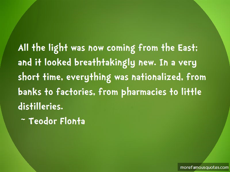 Teodor Flonta Quotes: All the light was now coming from the