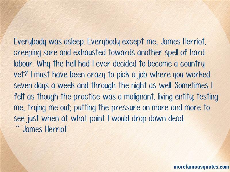James Herriot Quotes: Everybody was asleep everybody except me