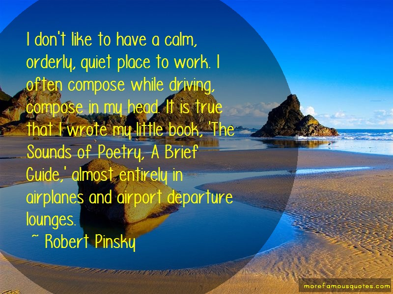 Robert Pinsky Quotes: I dont like to have a calm orderly quiet