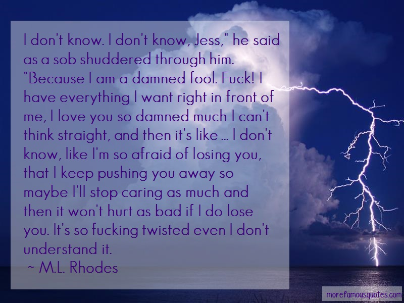 M.L. Rhodes Quotes: I dont know i dont know jess he said as