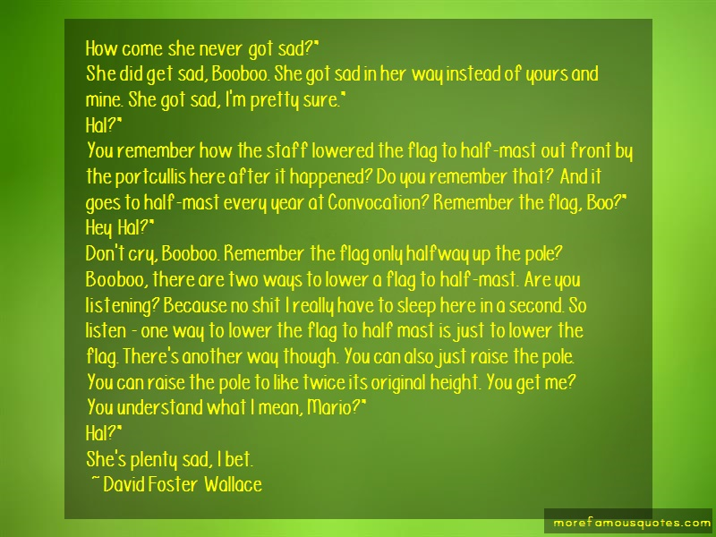 David Foster Wallace Quotes: How come she never got sad she did get