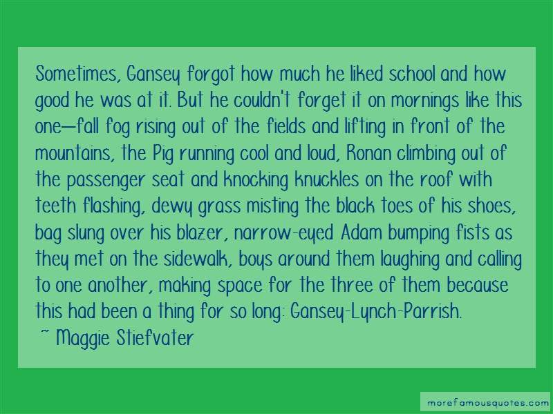Maggie Stiefvater Quotes: Sometimes gansey forgot how much he