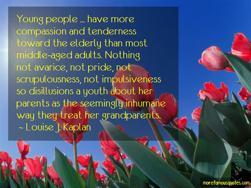 Louise J. Kaplan Quotes: Young people have more compassion and