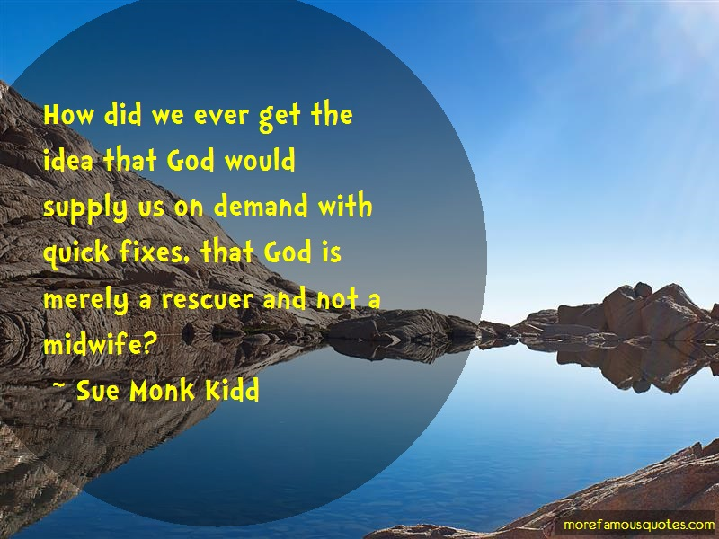Sue Monk Kidd Quotes: How Did We Ever Get The Idea That God