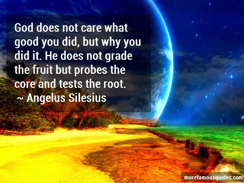 Angelus Silesius Quotes: God does not care what good you did but