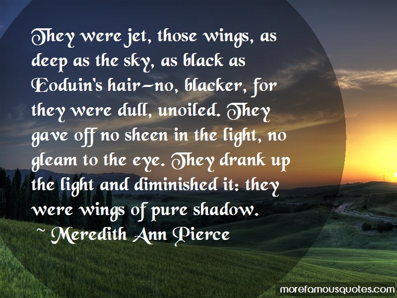 Meredith Ann Pierce Quotes: They were jet those wings as deep as the