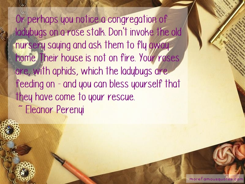 Eleanor Perenyi Quotes: Or Perhaps You Notice A Congregation Of
