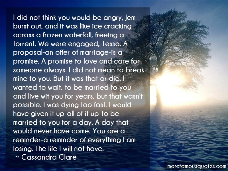 Cassandra Clare Quotes: I did not think you would be angry jem