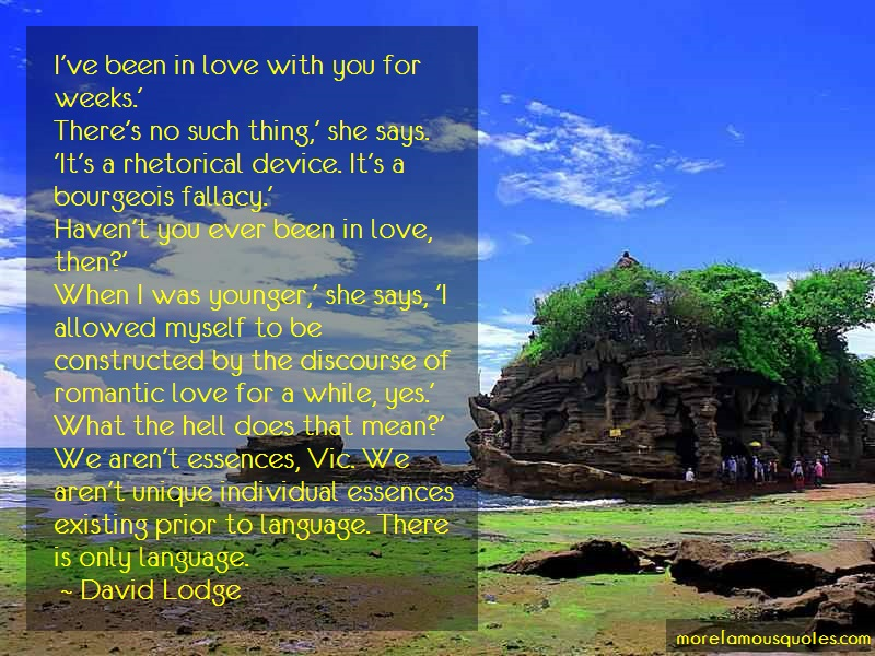 David Lodge Quotes: Ive Been In Love With You For Weeks