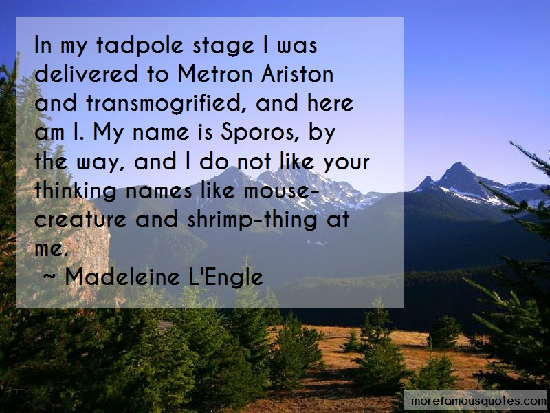 Madeleine L'Engle Quotes: In My Tadpole Stage I Was Delivered To