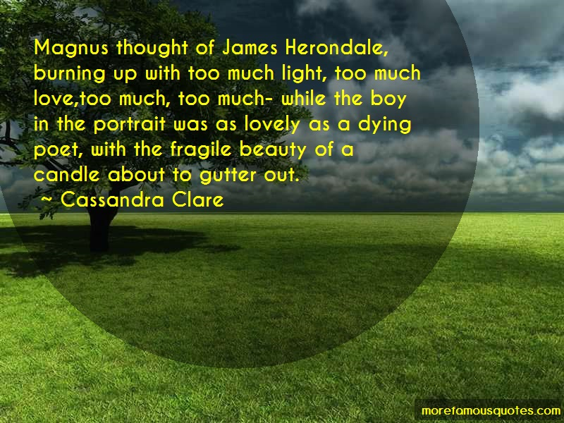 Cassandra Clare Quotes: Magnus thought of james herondale