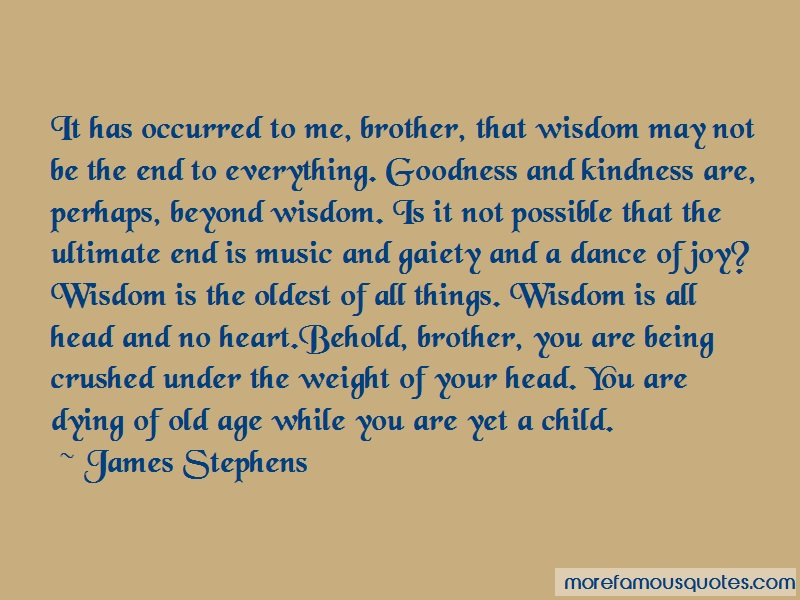James Stephens Quotes: It has occurred to me brother that