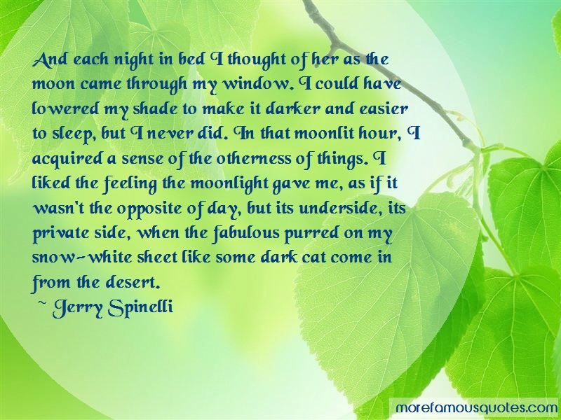 Jerry Spinelli Quotes: And each night in bed i thought of her