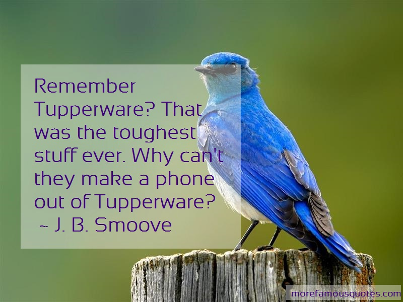 J. B. Smoove Quotes: Remember tupperware that was the