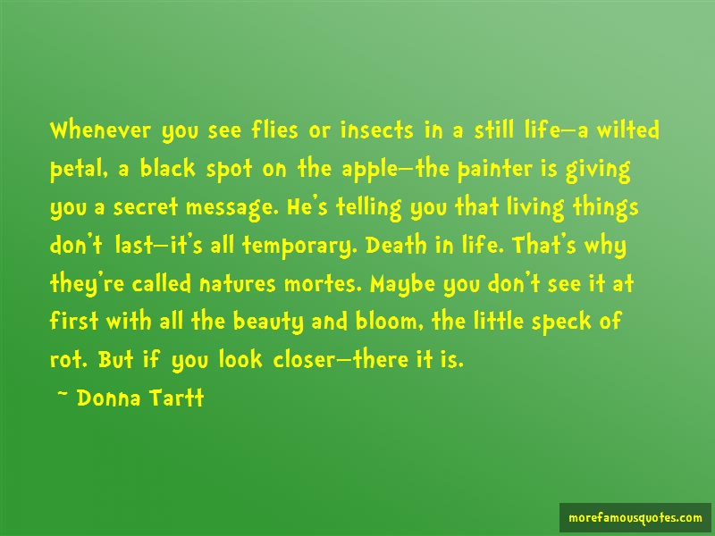 Donna Tartt Quotes: Whenever you see flies or insects in a