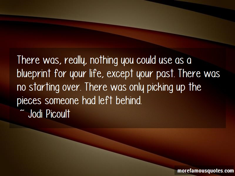 Jodi Picoult Quotes: There was really nothing you could use