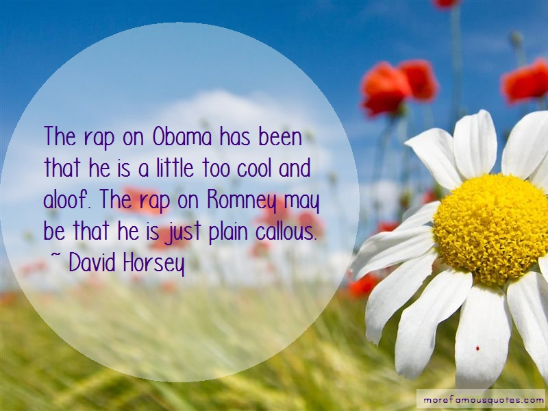 David Horsey Quotes: The Rap On Obama Has Been That He Is A