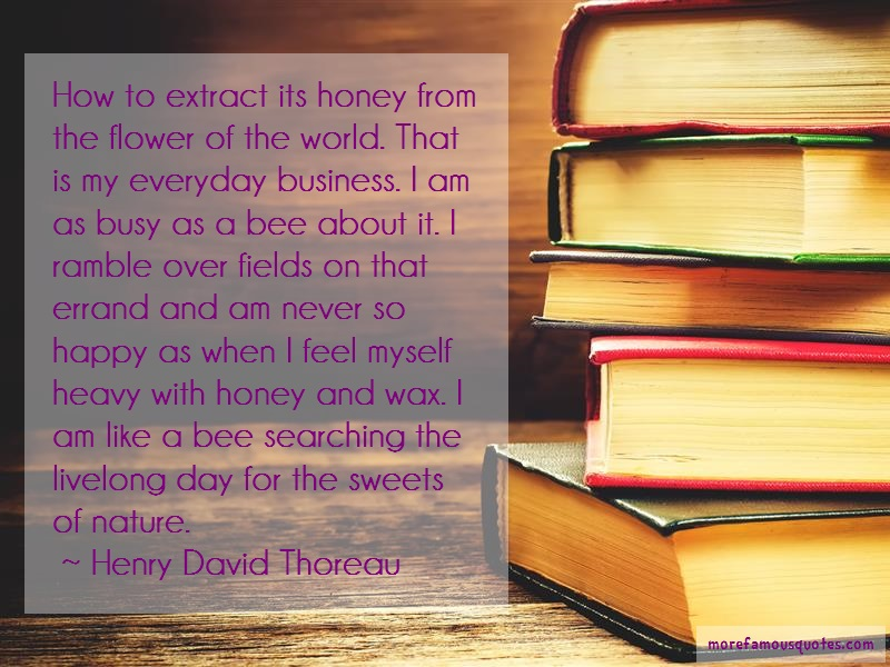 Henry David Thoreau Quotes: How to extract its honey from the flower