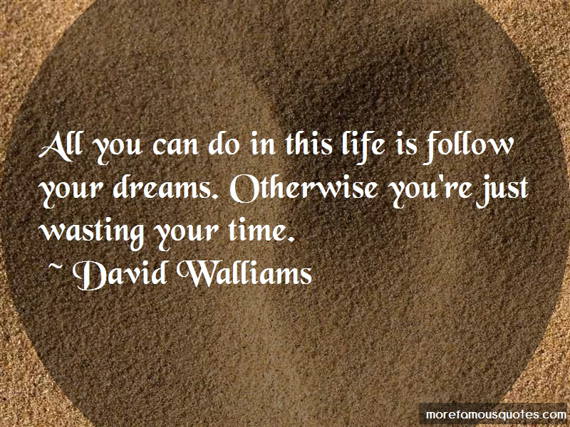 David Walliams Quotes: All you can do in this life is follow