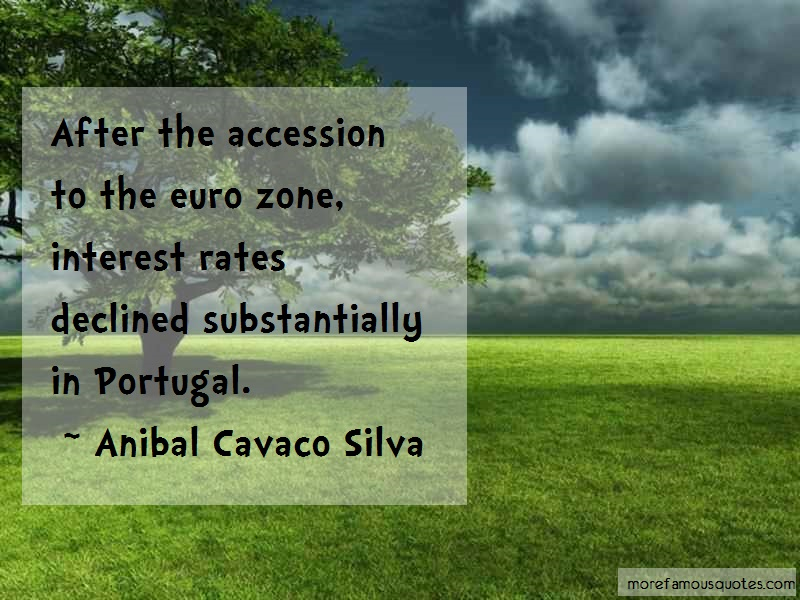Anibal Cavaco Silva Quotes: After the accession to the euro zone