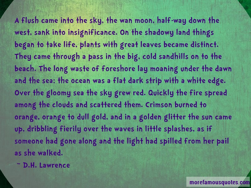 D.H. Lawrence Quotes: A flush came into the sky the wan moon