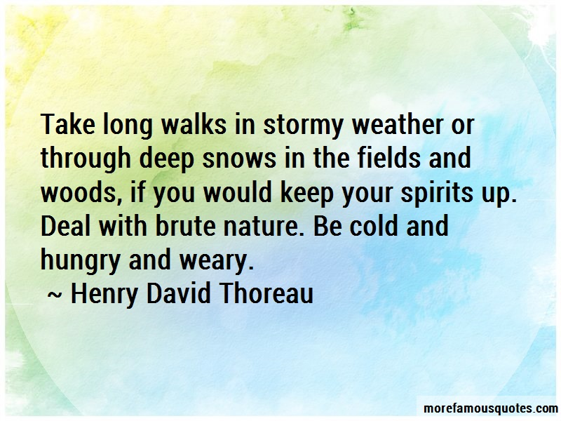 Henry David Thoreau Quotes: Take long walks in stormy weather or