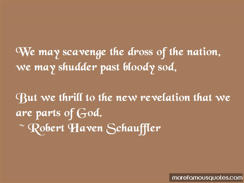 Robert Haven Schauffler Quotes: We May Scavenge The Dross Of The Nation