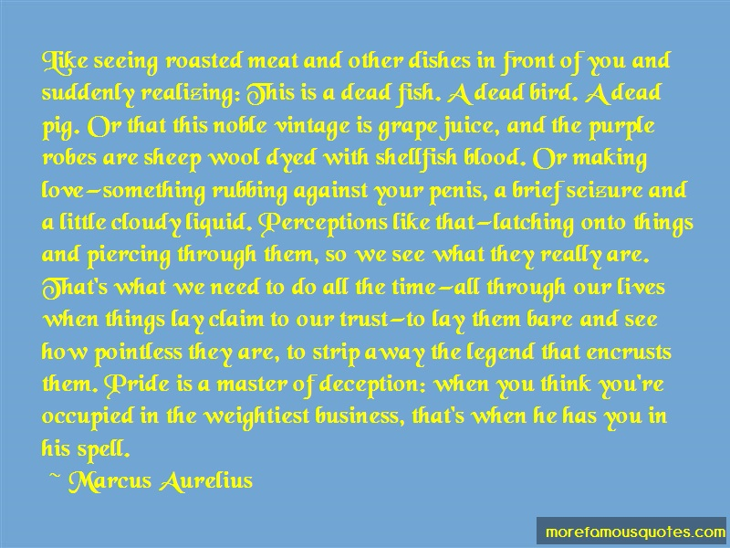 Marcus Aurelius Quotes: Like Seeing Roasted Meat And Other