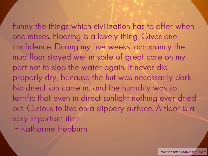 Katharine Hepburn Quotes: Funny the things which civilization has