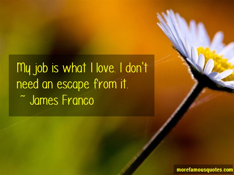 James Franco Quotes: My job is what i love i dont need an