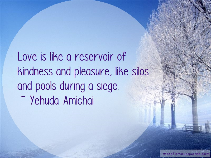 Yehuda Amichai Quotes: Love is like a reservoir of kindness and