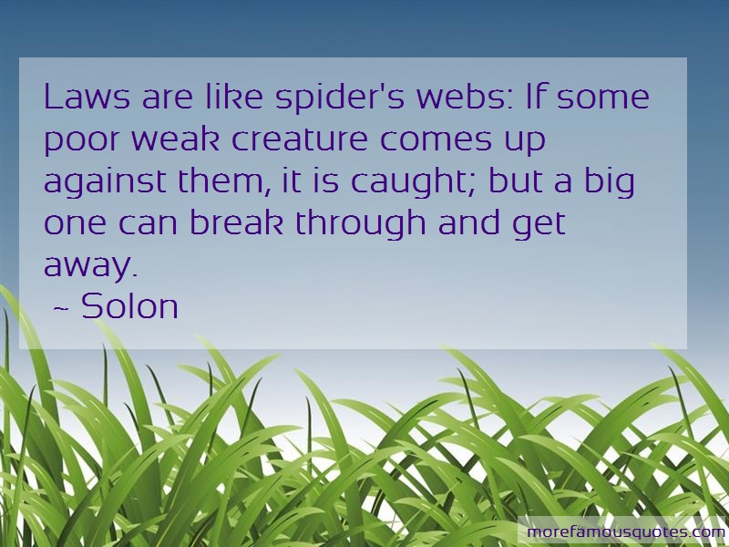 Solon Quotes: Laws are like spiders webs if some poor