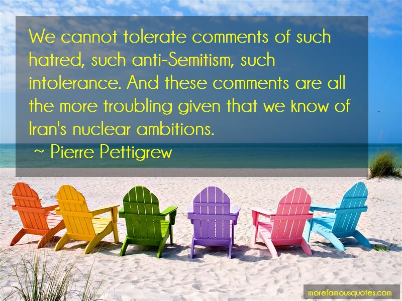 Pierre Pettigrew Quotes: We cannot tolerate comments of such