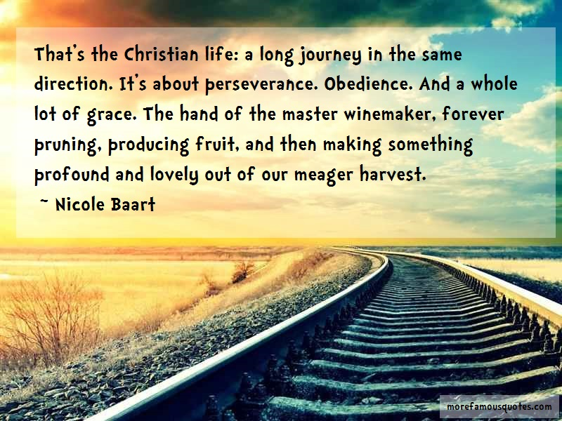 Nicole Baart Quotes: Thats The Christian Life A Long Journey