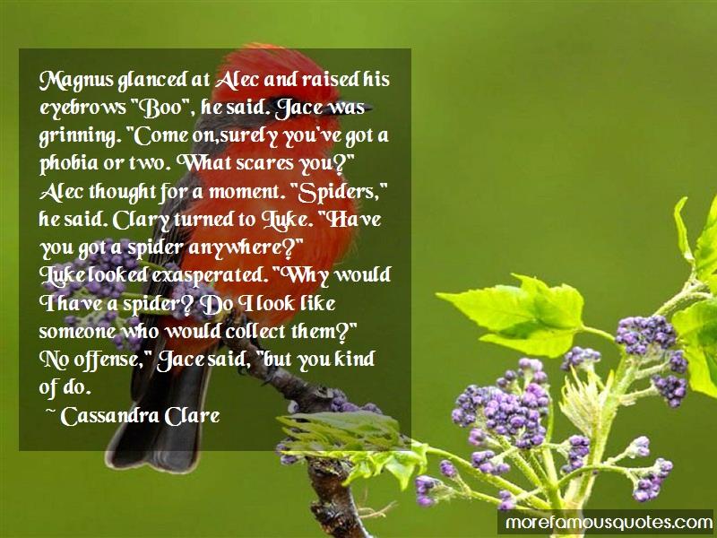 Cassandra Clare Quotes: Magnus glanced at alec and raised his