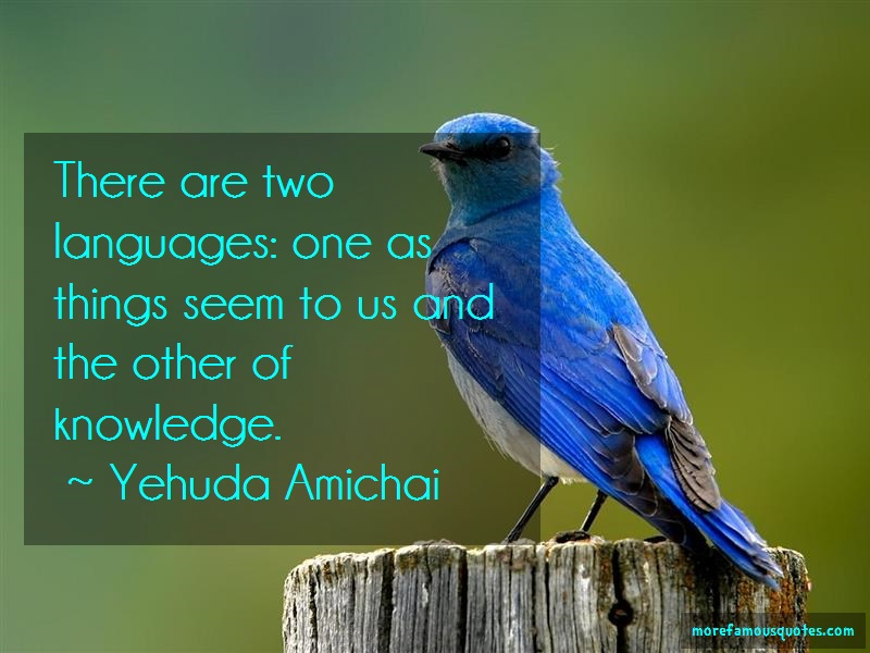 Yehuda Amichai Quotes: There are two languages one as things