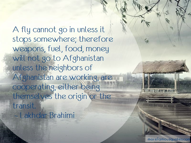Lakhdar Brahimi Quotes: A fly cannot go in unless it stops
