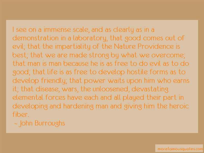John Burroughs Quotes: I See On A Immense Scale And As Clearly