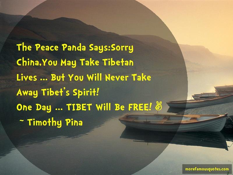 Timothy Pina Quotes: The Peace Panda Says Sorry China You May