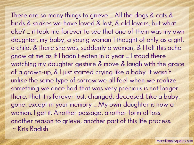Kris Radish Quotes: There are so many things to grieve all