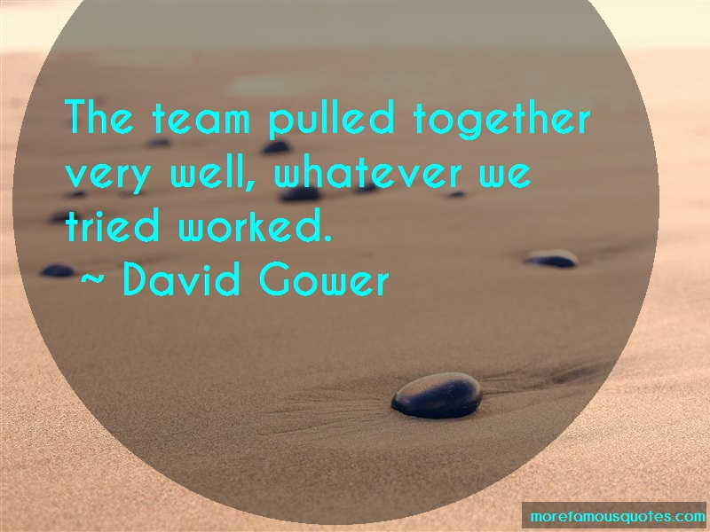 David Gower Quotes: The team pulled together very well