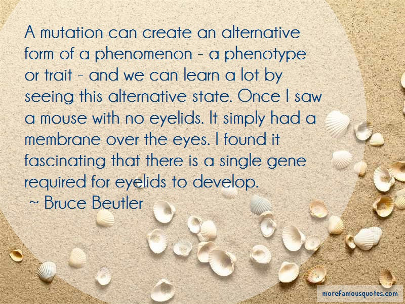 Bruce Beutler Quotes: A mutation can create an alternative