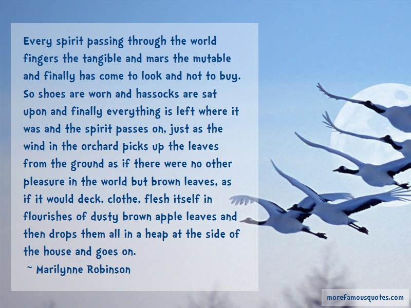Marilynne Robinson Quotes: Every spirit passing through the world