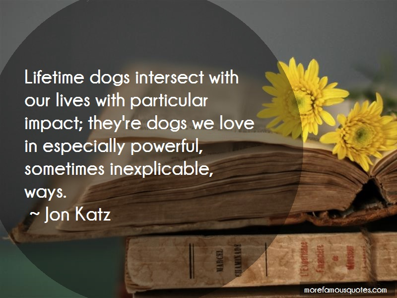 Jon Katz Quotes: Lifetime dogs intersect with our lives