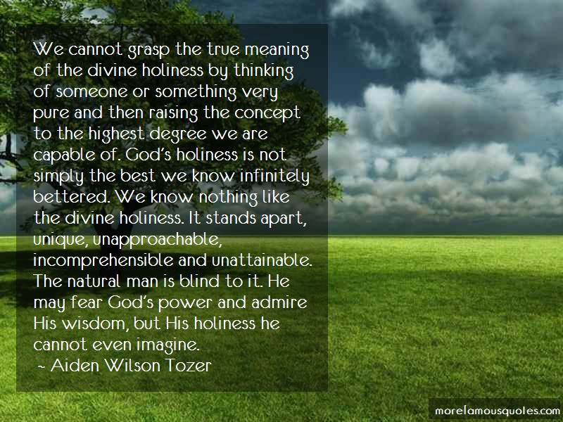 Aiden Wilson Tozer Quotes: We Cannot Grasp The True Meaning Of The