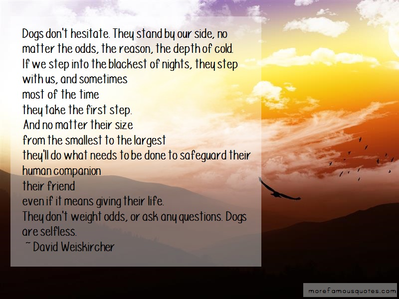 David Weiskircher Quotes: Dogs Dont Hesitate They Stand By Our