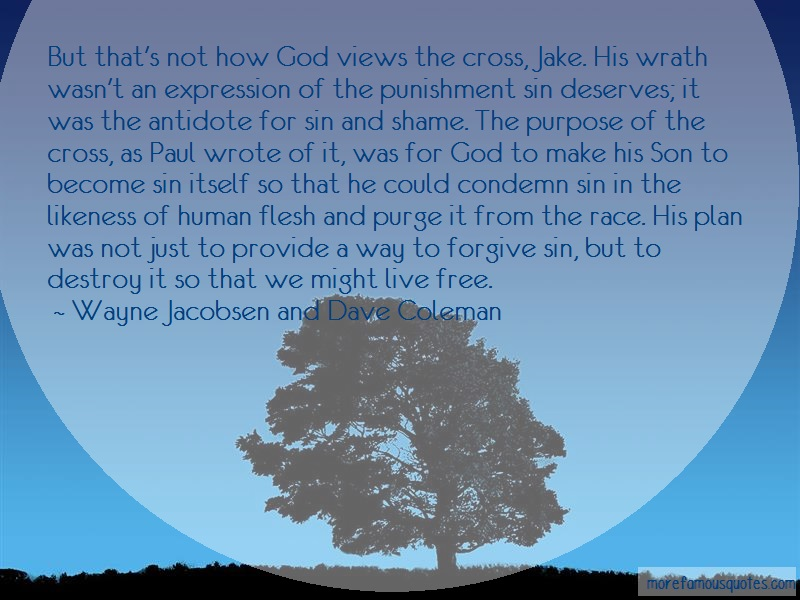 Wayne Jacobsen And Dave Coleman Quotes: But thats not how god views the cross