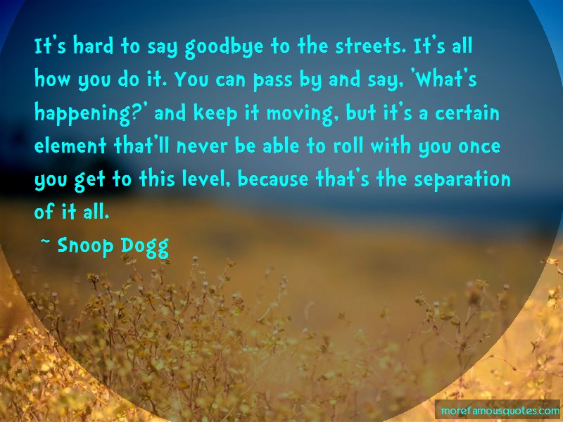 Snoop Dogg Quotes: Its hard to say goodbye to the streets