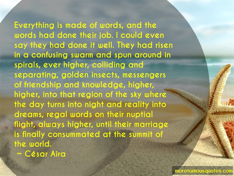 César Aira Quotes: Everything Is Made Of Words And The