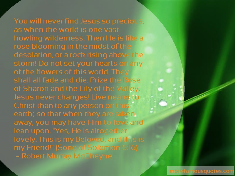 Robert Murray McCheyne Quotes: You will never find jesus so precious as